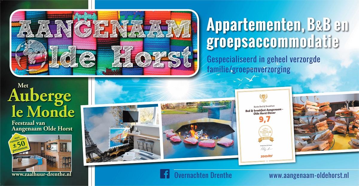 Overnachten, feestzaal, B&B, appartementen, familieweekend, familiedag, groepsuitje, personeelsuitje Diever Drenthe